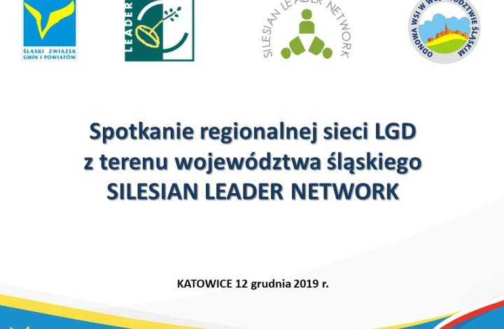 Spotkanie Przedstawicieli LGD i LGR z P. Wicemarszałek Woj. Śl. Beatą Białowąs